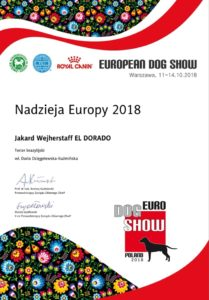 hope of europe 2018
